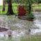 Что делать если затопило участок? Причины подтоплений приусадебных территорий