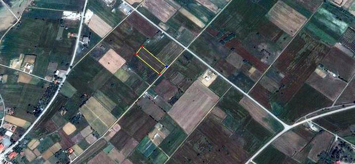 Как правильно выбрать участок в сельской местности?
