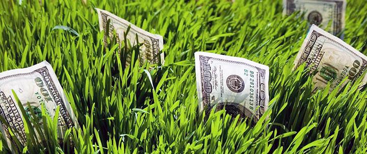 Налоги на дачи, дома и коттеджи. Сколько должен платить собственник?