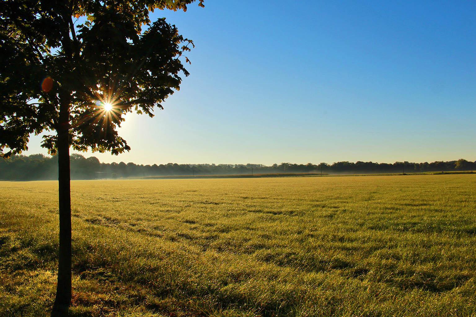 Как совершить сделку по покупке земельного участка