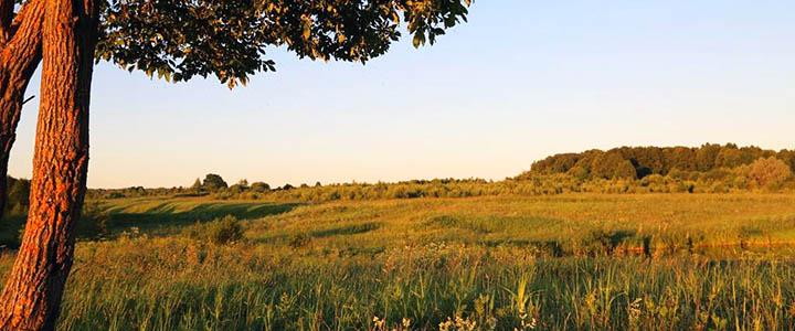 В каких районах Московской области самые дорогие и дешевые земельные участки?