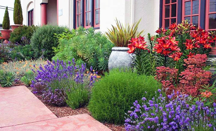 Как правильно благоустроить сад? 20 ошибок ландшафтного дизайна участка