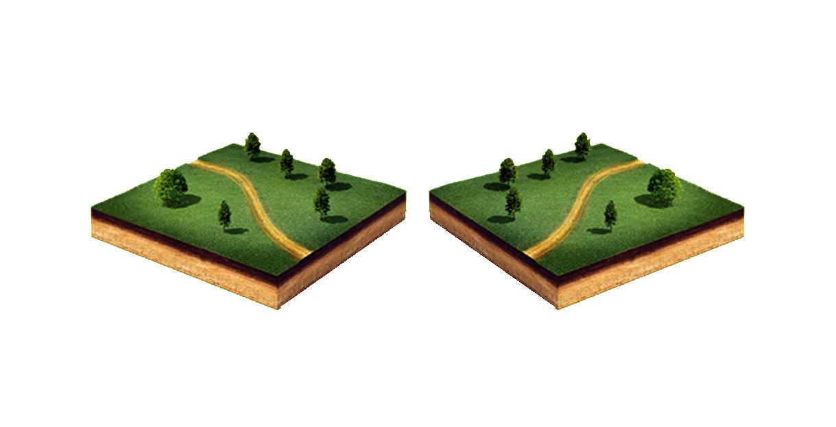 Как размежевать земельный участок на два участка