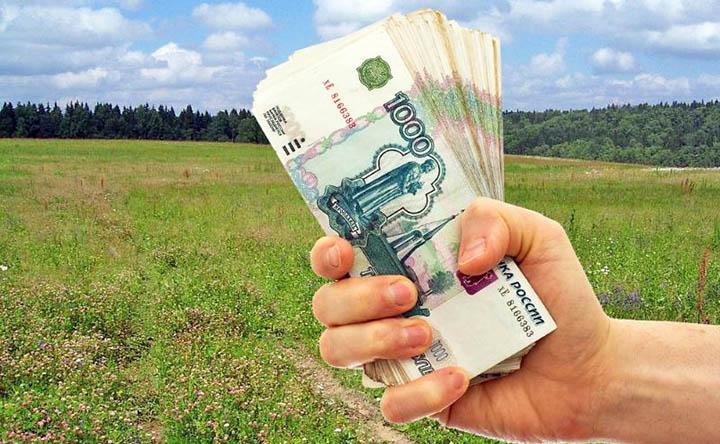 Какие есть льготы при покупке земельных участков и приобретении земли в собственность?