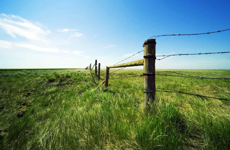 Что значит без координат границ земельный участок