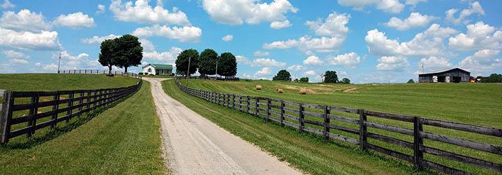 Как купить муниципальную землю и оформить ее в собственность? Аукционы и торги на земельные участки