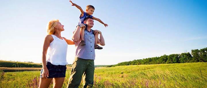 Как бесплатно получить земельный участок? Предоставление земли от государства