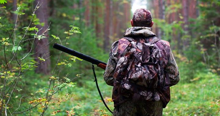 Охота в Подмосковье. Лучшие места где можно поохотиться в Московской области