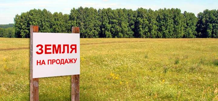 Можно ли заработать на покупке (перепродаже) земельных участков в Подмосковье?