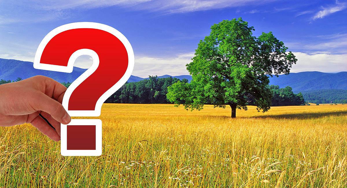 Для чего нужен классификатор видов разрешенного использования земельных участков и как им пользоваться?