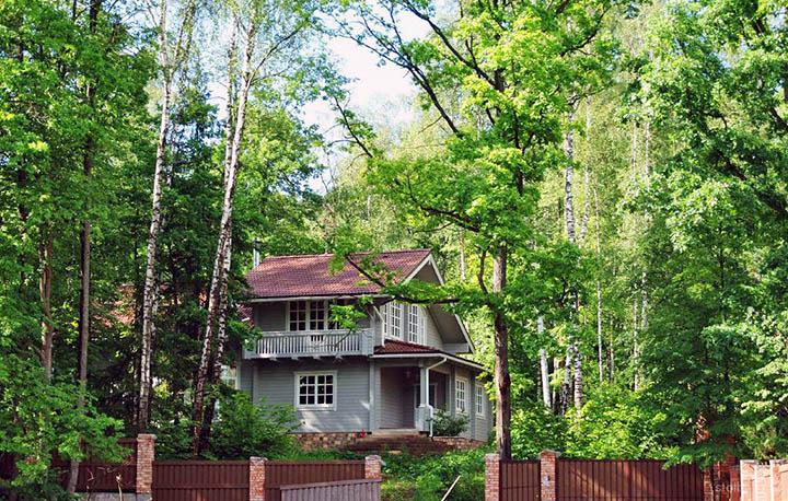 Прилесные участки (у леса). Что важно знать? Особенности, плюсы и минусы
