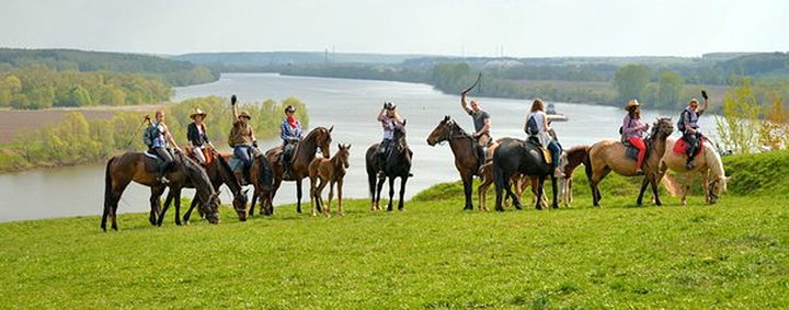 Где покататься на лошадях в Подмосковье? Конные прогулки в Московской области