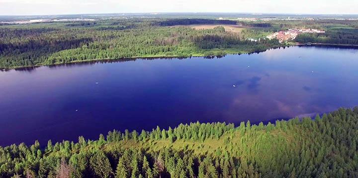 Хотите иметь таунхаус в хвойном лесу? Выбирайте Ленинградское шоссе