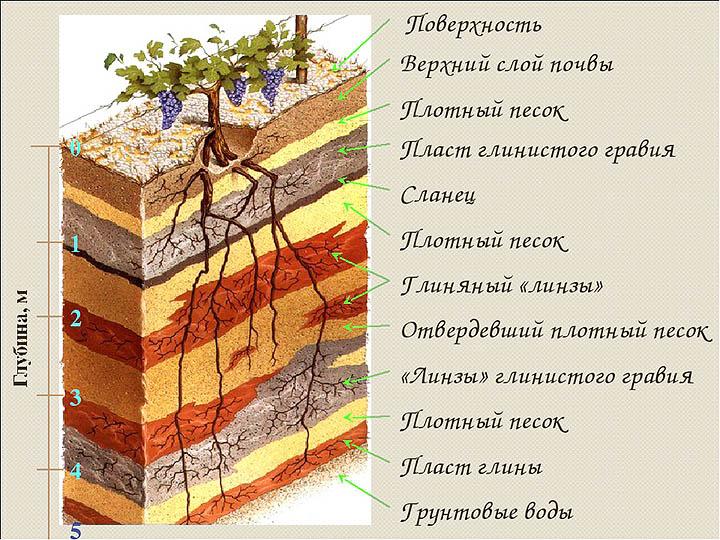 Геологические особенности земель Московской области