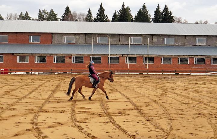 Элитные конные клубы Подмосковья рядом с Рублевским и Можайским шоссе
