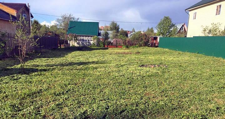 Подбор и приобретение участка в садовом товариществе. О чем важно знать?
