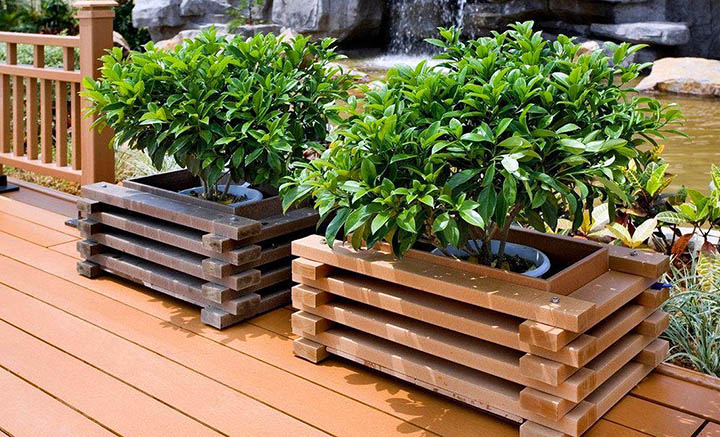 Озеленение террас, веранд и балконов. Что туда посадить?